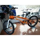 Bicicleta BMX Gotty