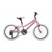 Bicicleta Infantil Coluer Magic 201